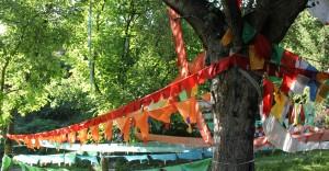 Drapeaux de prières et arbres sacrés (Gansu, juillet 2010-Chine, photo Weixuan Li)