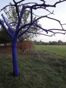 Cet arbre peint en bleu pour le conserver comme témoin  de la pollution humaine, est  désormais une oeuvre du musée de la Nature.