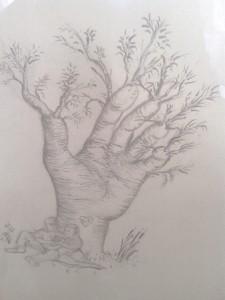 La main feuillue  où l'arbre des amoureux (dessin Georges Seror)