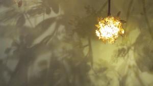 Fleurs de Lumière chez Vero & Jano (photo S.Dallet)